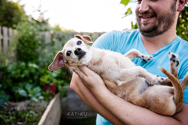 kat-ku-photography-detroit-michigan-dog-photos_14