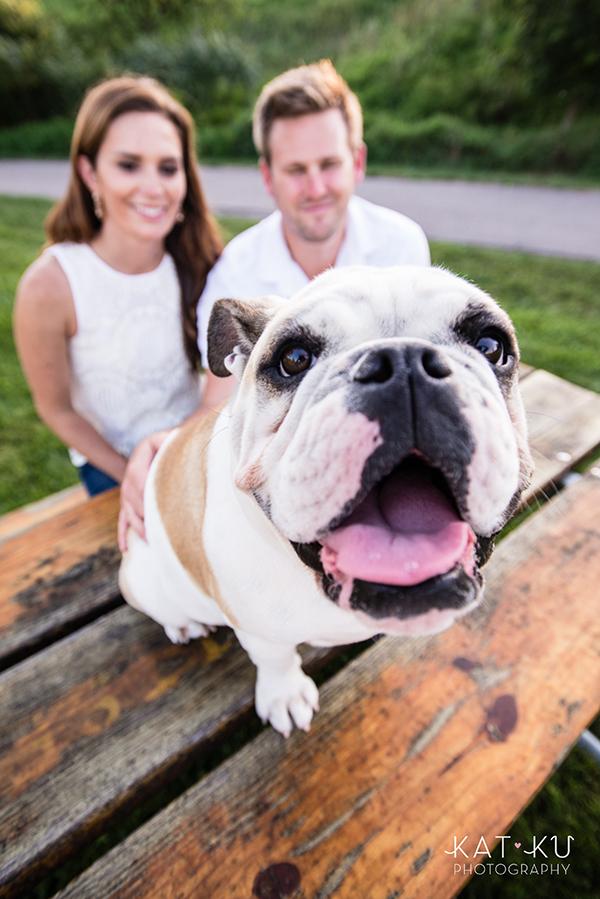 kat-ku-gemma-english-bulldog-pet-photography_20