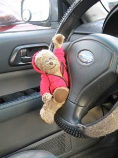 Lippe holding steering wheel