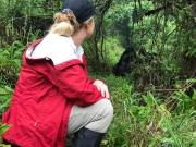 Mountain Gorilla National Parks in Africa