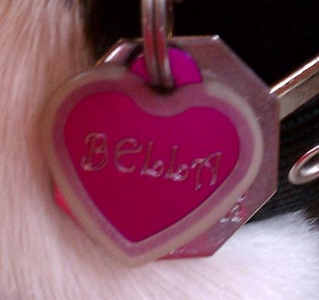 Bella's Tag
