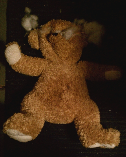 torn teddy