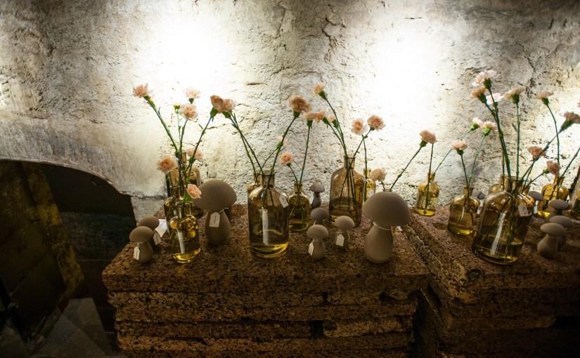 Ausstellung für Natur- und Gartenfreunde