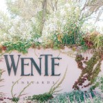 I went to Wente and so should you – Livermore Valley Wine Country
