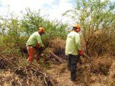 KISC crew working on LTK