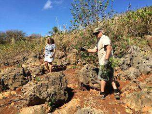 Makauwahi Cave Reserve Work Day
