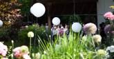 Freie Traung in Kaupers Garten