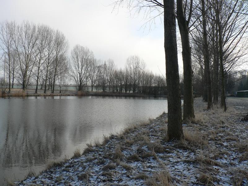 Neuer Teich Hakenstedt