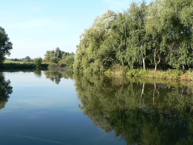 Teich Nordgermersleben
