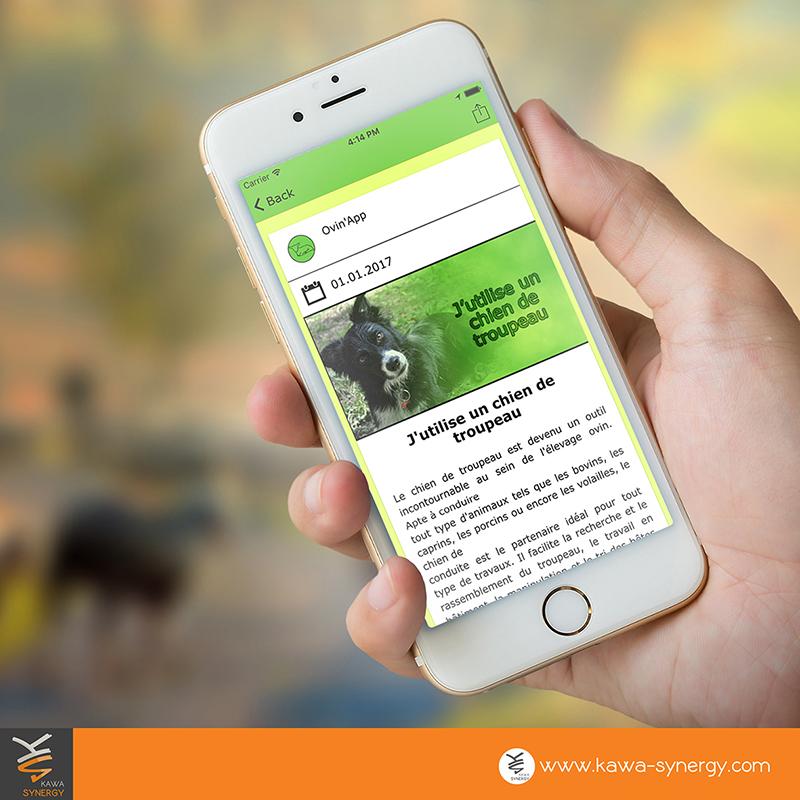 utilisation de notre plateforme kawa app pour pr u00e9senter un projet professionnel de fa u00e7on