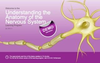 Module iSpring système nerveux