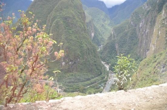 Estradinha de ônibus de Águas Calientes até Macchu Picchu, muito medo!