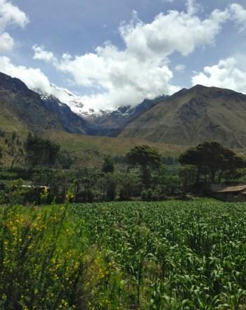 Trem em Macchu Picchu