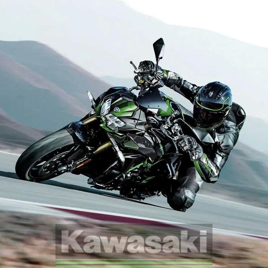 Daftar Harga Kawasaki Z Series 2021