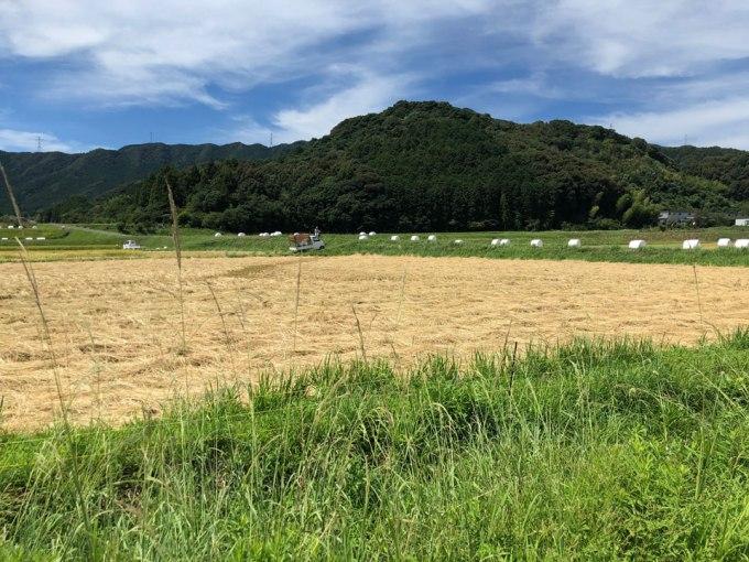 熊本天草に建つデザイン住宅