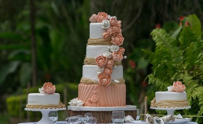 Cake – 1