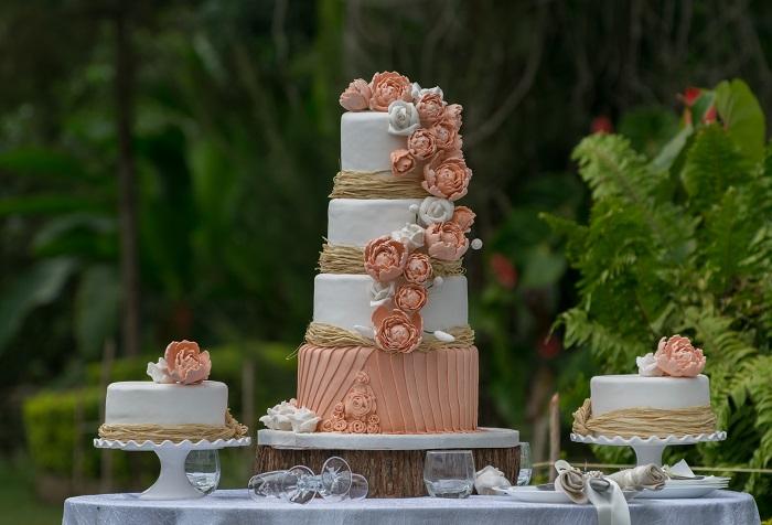 Cake, Keky Tamu, KawiWedsDion
