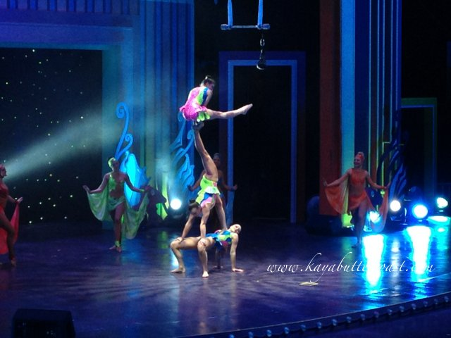 Gala Premiere of LumiAir - A Cirque Sensation (12)