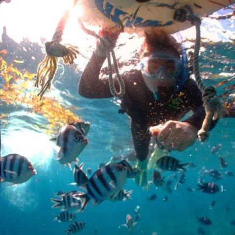 沖繩潛水半日遊:真榮田岬與読谷村海邊 | 旅遊貼士網誌 | KAYAK香港