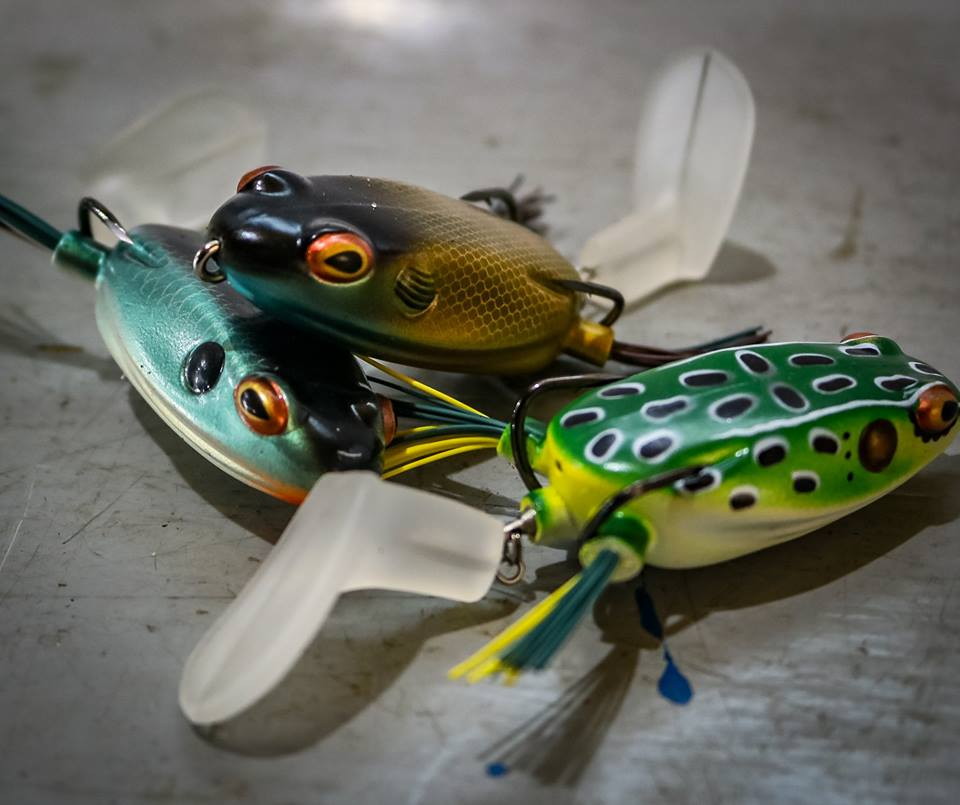 """Booyah Pad Crasher Frog 2.5/"""" CHOOSE YOUR COLOR"""