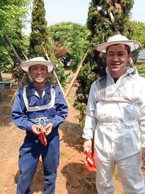 養蜂事業 豊川市 ミツバチプロジェクト - 2
