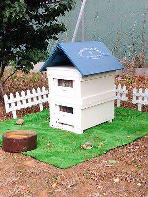 養蜂事業 豊川市 ミツバチプロジェクト - 3