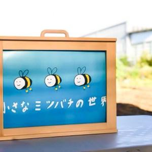 CSR活動 はちみつ採集体験 愛知県 豊川市 加山興業