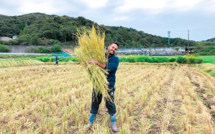 シンシア豊川 フェニックス ×加山興業 一反パートナー 無農薬米