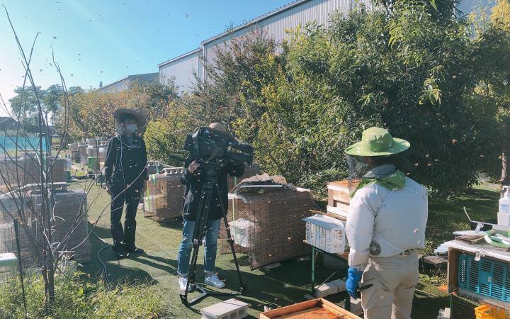 小学校環境授業 ウィークリーとよかわ CCNet 愛知県 豊川市