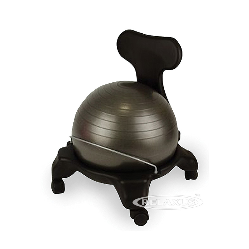 Fit Ball Chair Back Support