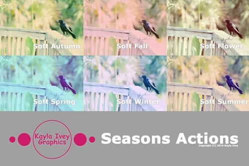 Seasons Actions Banner Blog