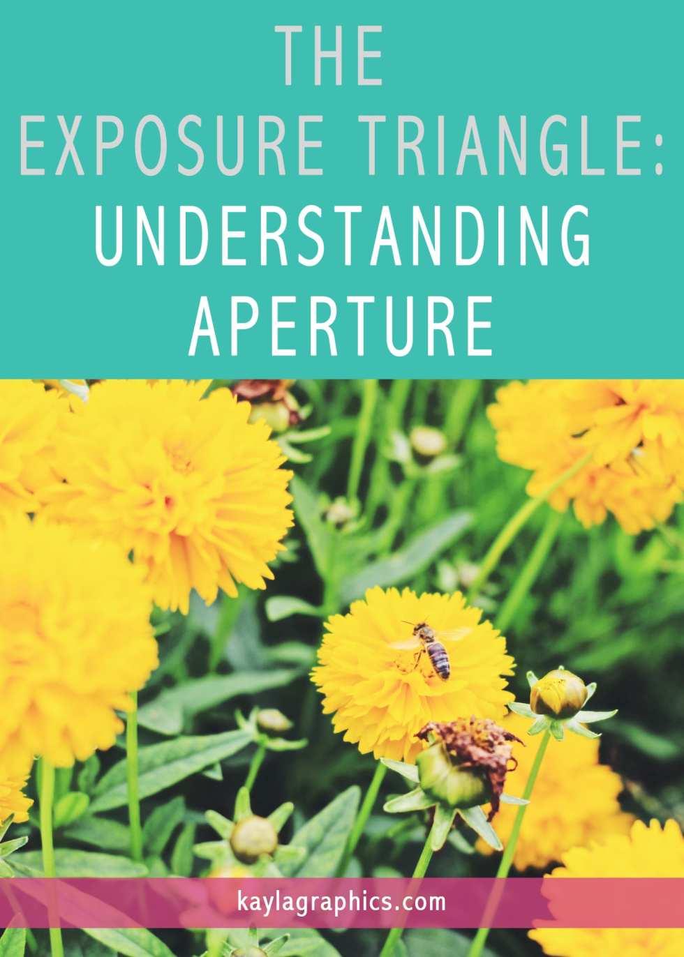 THE EXPOSURE TRIANGLE UNDERSTANDING APERTURE