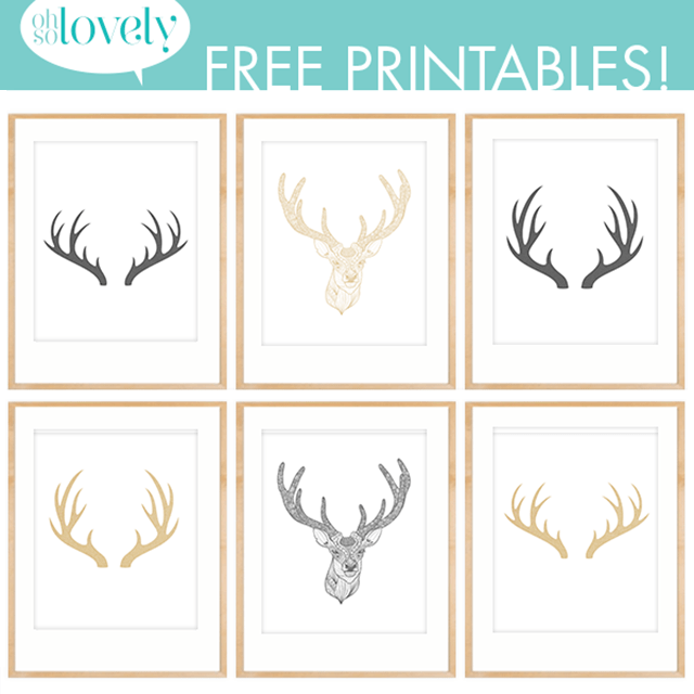 Lumberjack Free Printables Nursery Gallery Wall Ideas