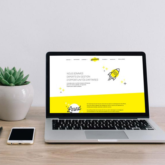 Web design and branding for Limonade.ca   Kaylynne Johnson - web & design   www.kaylynnejohnson.com