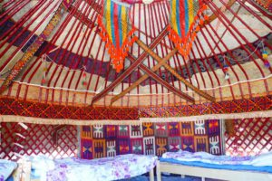 In the Yurt