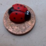 Lady Bug with seven dots and Lucky Cent