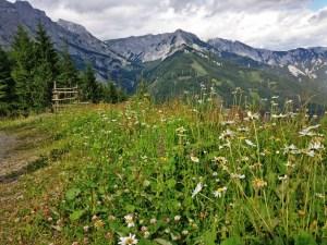 Hochschwab Hike