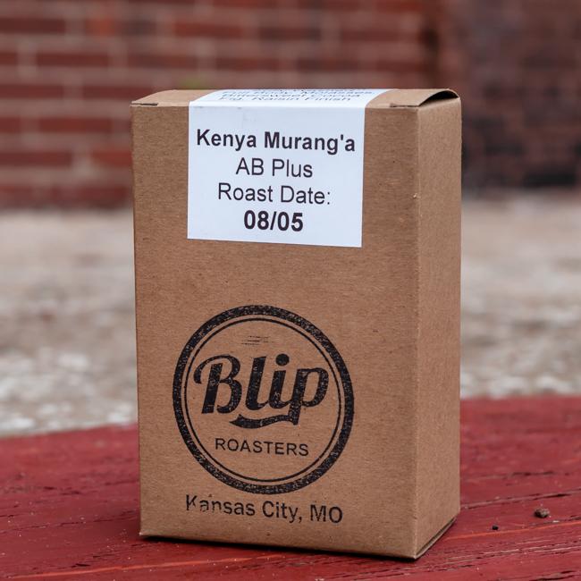 Blip Roasters Kenya Murang'a AB Plus