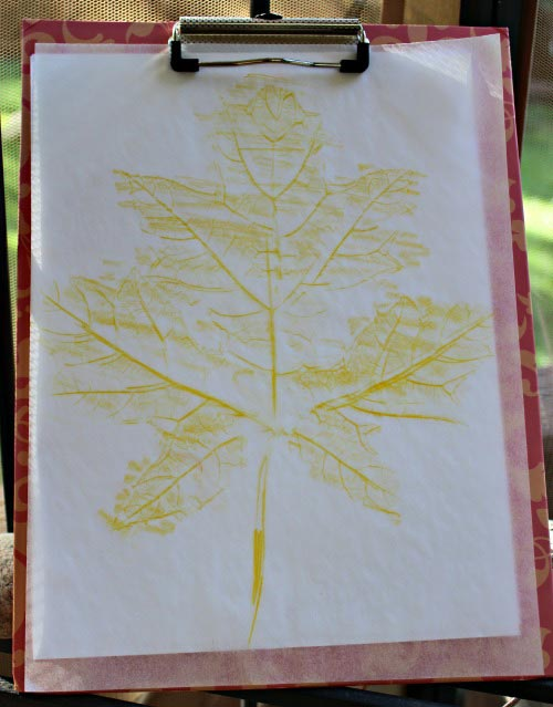 Leaf Rubbing Art & Science Activity Tutorial | Edventures with Kids