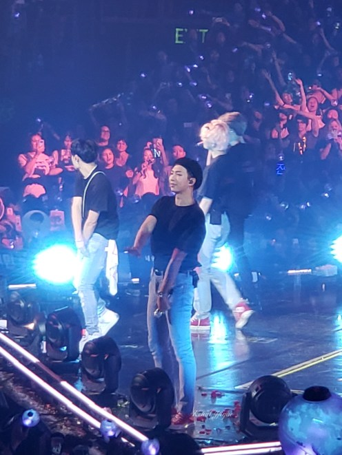 BTS - RM Namjoon - 2018 Love Yourself Tour 5