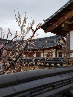 Busan day 4 - Gyochon Traditional Village 5