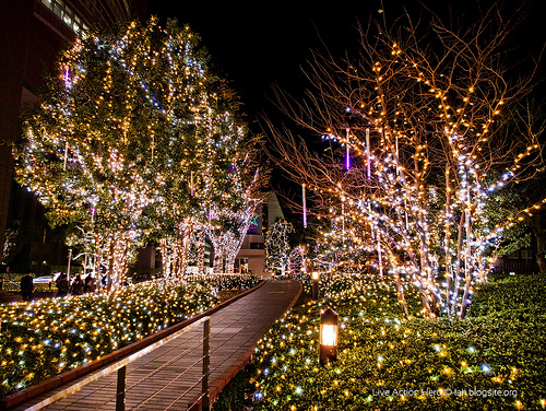 The Story Of Christmas In Japan KCP International