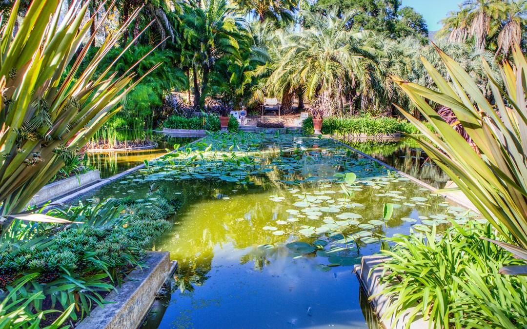 Experience Santa Barbara's Lotusland