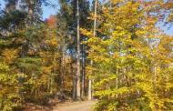 Říjnový výšlap s výstupem na Jedovou byl ukázkou krásného podzimního počasí
