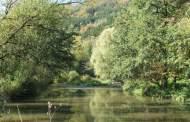 Podzimní výprava údolím Tiché Orlice