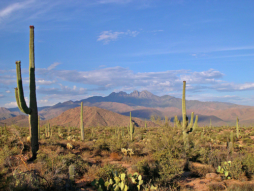 Tucson Fintech - Securities & Investments