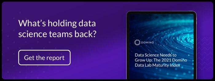 Domino Report Data Science Teams