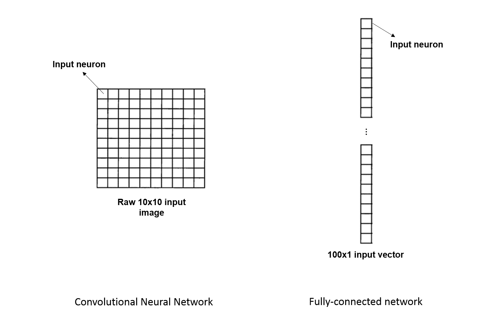 Understanding Deep Convolutional Neural Networks With A