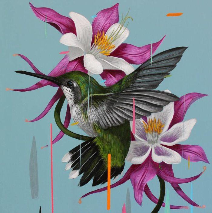 Dipinti di uccelli in una pioggia di colori di Frank