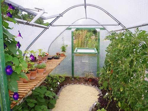 Inside View Keder Greenhouse